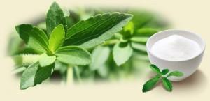 Cỏ Ngọt Stevia – Thực Phẩm Hoàn Hảo Cho Người Giảm Cân